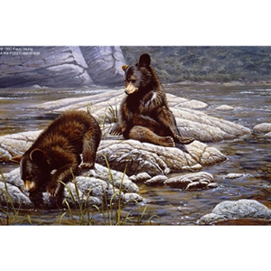 The Adventurers - Black Bear Cubs by artist Paco Young