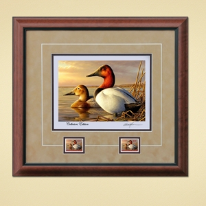 11. 2014 - 2015 Federal Duck Stamp Print COLLECTOR'S EDITION REGULAR - Canvasback Pair by Adam Grimm