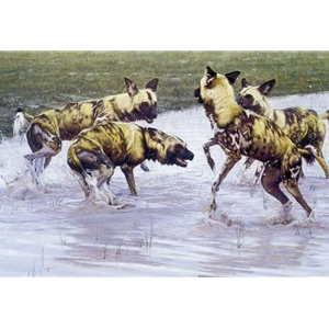 After the Rains - African Wild dogs by John Banovich