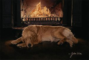 A Feeling of Warmth by John Weiss