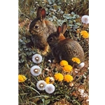 Colorful Playground - Cottontails (rabbits) by wildlife artist Carl Brenders