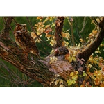 Autumn Afternoon - Great Horned Owl by artist John Mullane