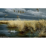 Dark Sky Pintails by Iowa wildlife artist Maynard Reece
