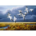 Dark Sky Snow Geese by Iowa wildlife artist Maynard Reece
