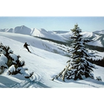 High Country Skier by artist Maynard Reece