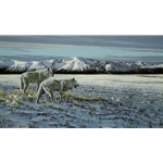 First Snow - Arctic Wolves by wildlife artist Ron Parker