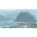 Along the Coast - Bald Eagle by Robert Bateman