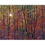Autumn Sunburst fall colors by impressionist artist Tim Packer