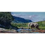 Monarch of Mwaluganje (Kenya) - bull elephant by African wildlife artist Guy Combes