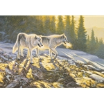 Companions - Wolf pair by wildlife artist Stephen Lyman