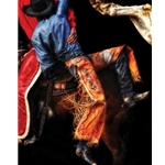 Pick Up - Rodeo by photographer Karen Kelly