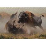 When the Dance Ends - battling bisons by western artist Kyle Sims