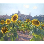 Sunflowers of Castiglion Fiorentino - Tuscany by June Carey