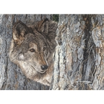 Looking for Love - wolf by artist Judy Larson