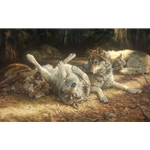 Social Viewpoints - Wolves by artist Bonnie Marris