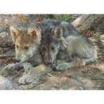 Brotherly Love - Wolf Pups by artist Carl Brenders