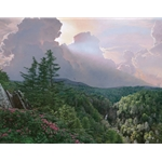 Where the Rhododendron Grow - mountain landscape by Phil Philbeck