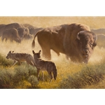 The Passersby - Bison herd and coyote by Dustin Van Wechel