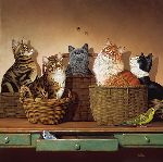 Basket Cases by Braldt Bralds