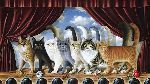 A Chorus Line  - cats curtain call by Braldt Bralds