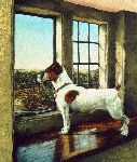 I Spy Summer - Jack Russell Terrier by artist Jessica Holm