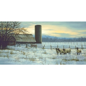 Winter Watch - Sheep on the Ranch by artist Paco Young
