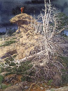 Prayer for the Wild Things by Bev Doolittle