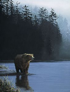 Coastal Morning - Grizzly Bear by wildlife artist Ron Parker