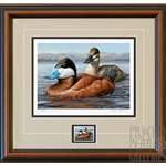 2015- 2016 Federal Duck Print COLLECTOR'S EDITION REGULAR - Ruddy Ducks by Jennifer Miller