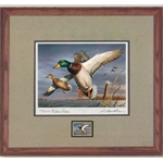 2018-2019 Federal Duck Stamp COLLECTOR EDITION - Mallards by Robert Hautman