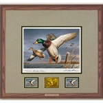 2018-2019 Federal Duck Stamp MEDALLION EDITION - Mallards by Robert Hautman