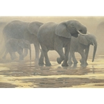 By the River - Elephants by Robert Bateman