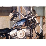 Free as the Breeze - Towhee on Harley Motorcycle by wildlife artist Carl Brenders