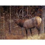 A Hunter's Dream - Bull Elk by wildlife artist Carl Brenders