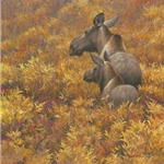 Fall Forage - Moose Cow and Calf by Robert Bateman