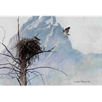 In the Mountains - Osprey by Robert Bateman