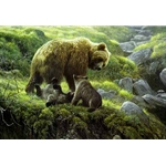Grizzly and Cubs by Robert Bateman