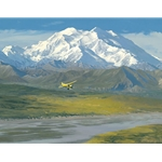 Denali Summer by William Phillips