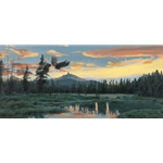Distant Horizons - Bald Eagles by wildlife artist Rod Frederick