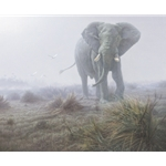 Denizen of the Mist - Elephant by Daniel Smith