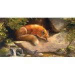 Contemplating the Dragonfly - Red Fox by wildlife artist Bonnie Marris