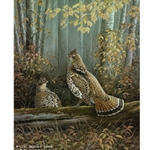 Upland Series IV Ruffed Grouse by wildlife artist Maynard Reece