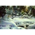 Deep Woods Winter by Nita Engle