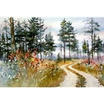 Grouse Country by Nita Engle