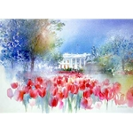 White House Spring by Nita Engle