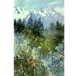 Mountain Meadow by Nita Engle
