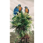 The Three Amigos blue & gold macaws by wildlife artist Rod Frederick