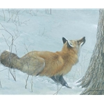 Game Over - Fox and Maple by Robert Bateman