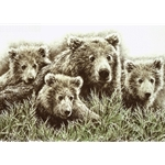 Fruitful Spring grizzly family by wildlife artist Chris Calle