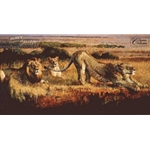 Waiting For Night to Fall - Lions by wildlife artist Bob Kuhn mpp